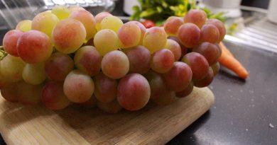 Zašto treba jesti semenke grožđa: Čuvaju ćelije od oštećenja