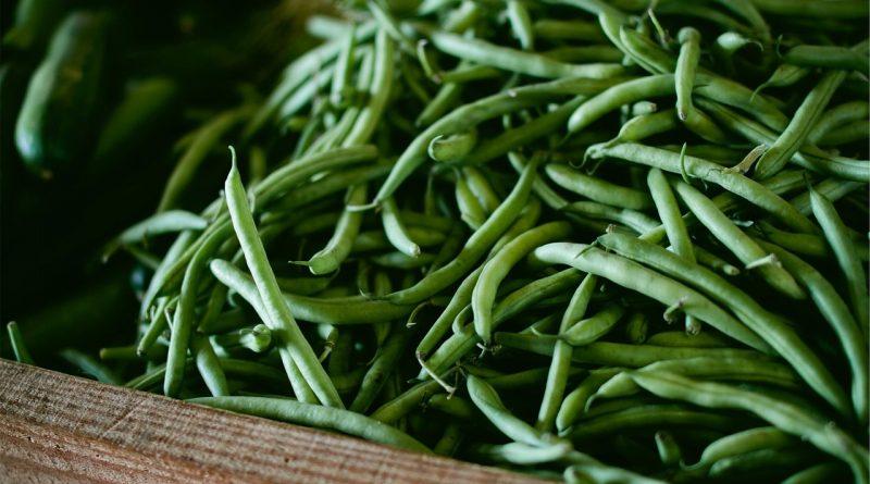 Zelena boranija: Samo jedna šoljica oporavlja kosti, srce, sprečava rak debelog creva